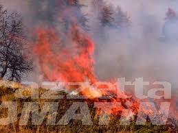 Allarme incendi: dichiarato stato grave pericolosità