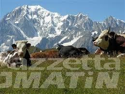 Turismo: Ferragosto con il quasi tutto esaurito in Valle d'Aosta