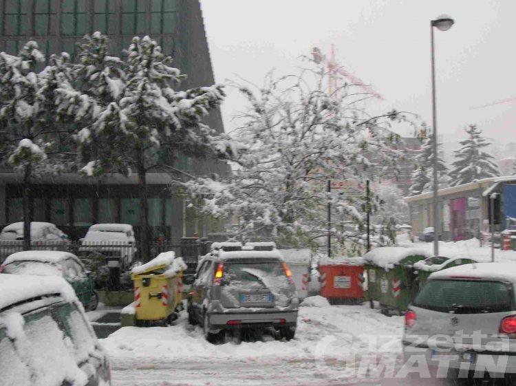Aosta: neve pesante schianta alberi in collina