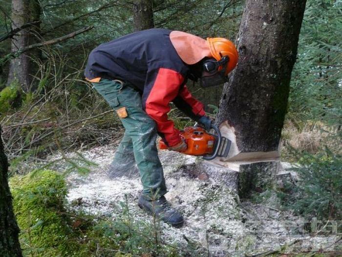 Consiglio Valle: approvato il Piano straordinario per i cantieri forestali, ma in aula è scontro su dove si è andati a reperire i fondi necessari