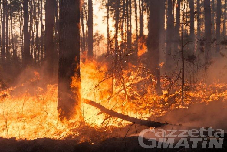Incendio nei boschi di Perloz