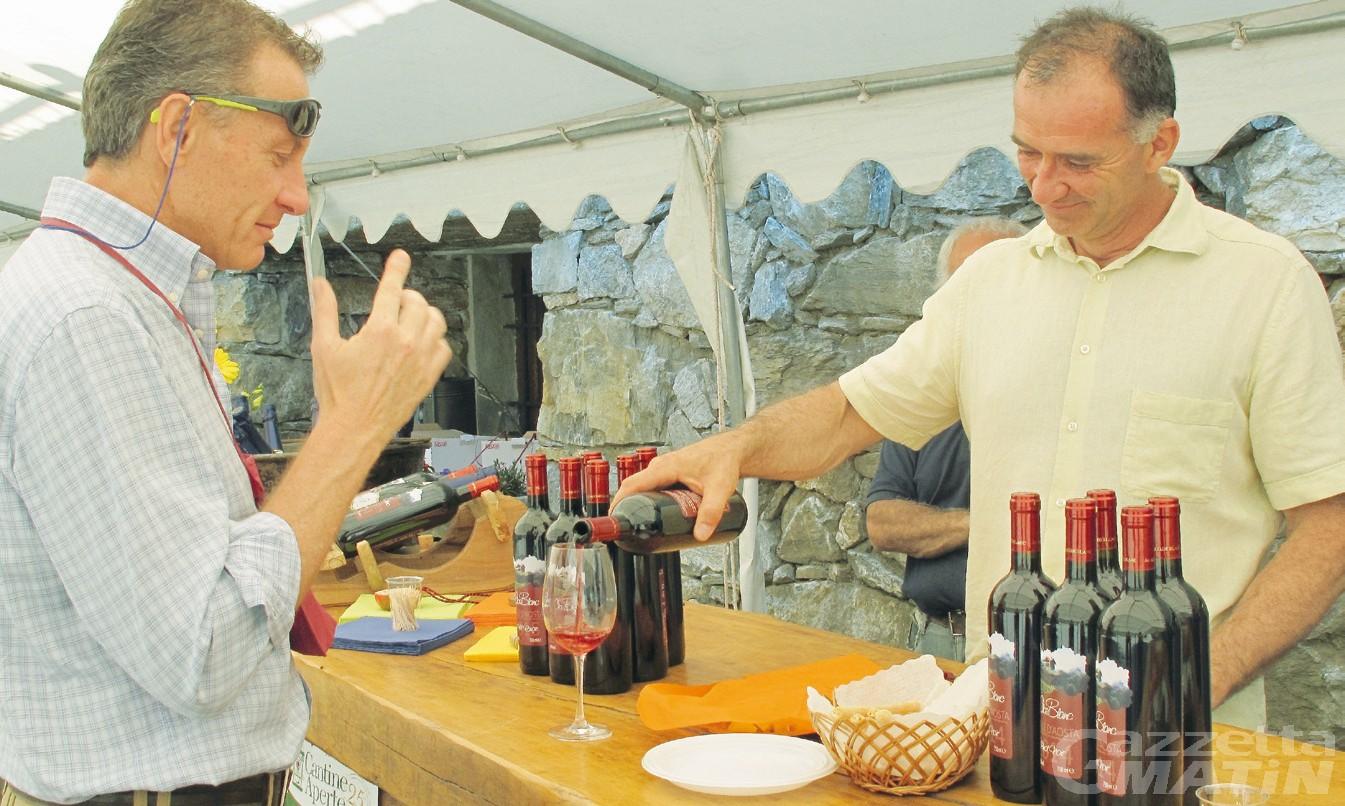 Vini in vigna, tre domeniche alla scoperta dei vini e dei vitigni eroici della Valle d'Aosta