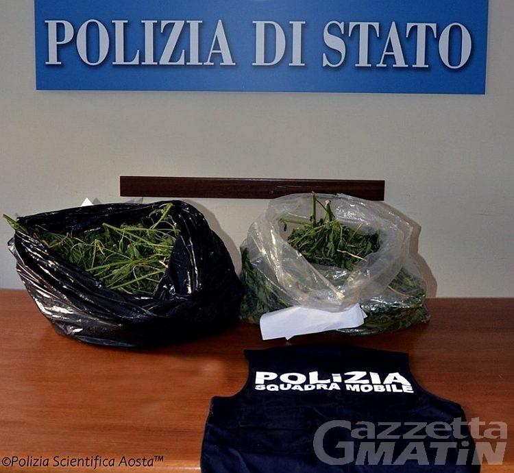 Si fa recapitare a casa un pacco con marijuana, denunciato quarantenne di Gignod