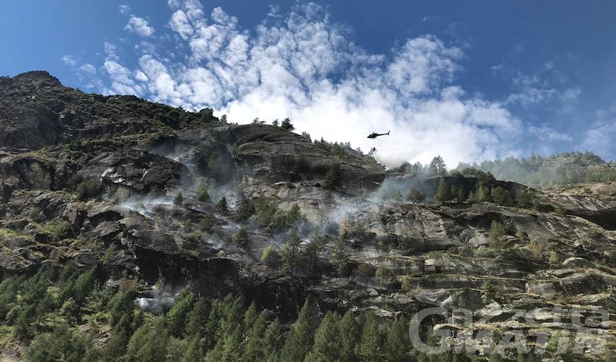 Incendio boschivo a Valgrisenche: nessun danno a persone e immobili