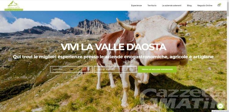 Turismo, Alpine Lands la nuova realtà promozionale per la montagna