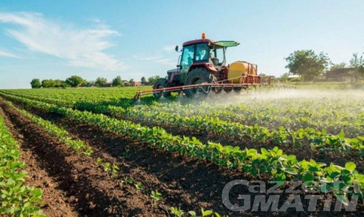 Agricoltura: dall'Europa 45 milioni di euro alla Valle d'Aosta