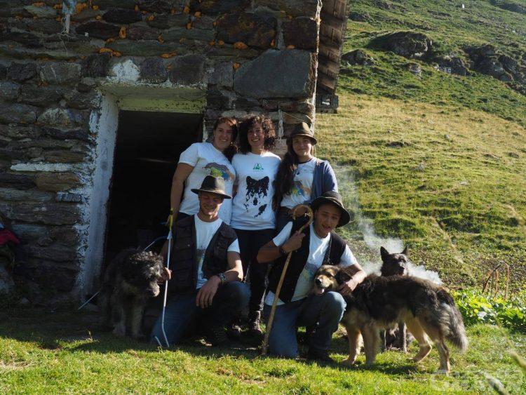 Convivenza con il lupo, Progetto Pasturs: 2 pastori e 20 volontari insieme per dimostrare che si può
