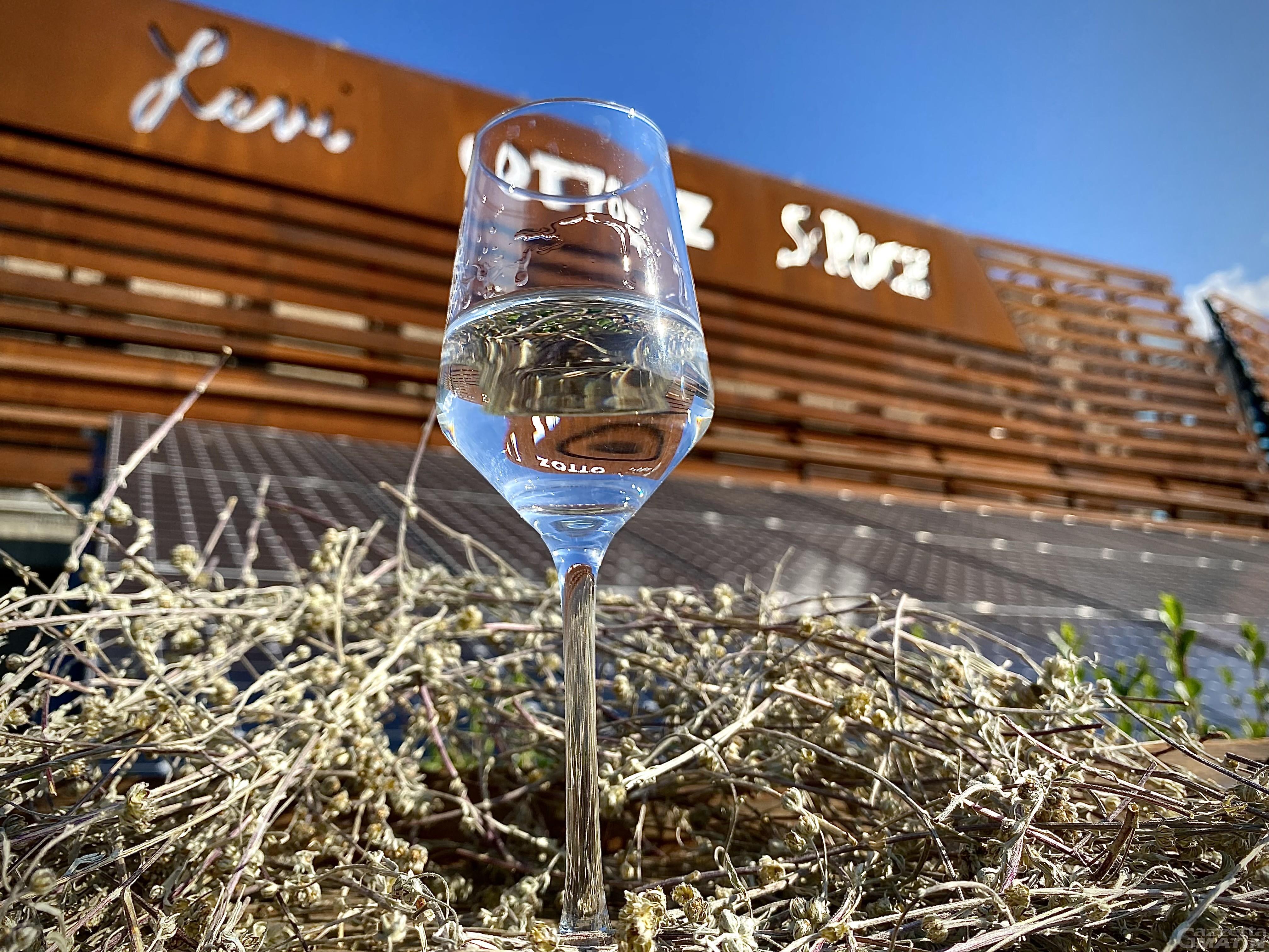 """Arriva l'""""evoluzione"""" del Génépy IG della Valle d'Aosta, è il BLANC delle Distillerie Saint Roch"""