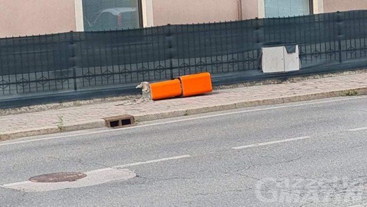 Charvensod: vandali abbattono un Velo Ok, il sindaco sbotta e propone un decalogo per chi non sa gestire la tensione