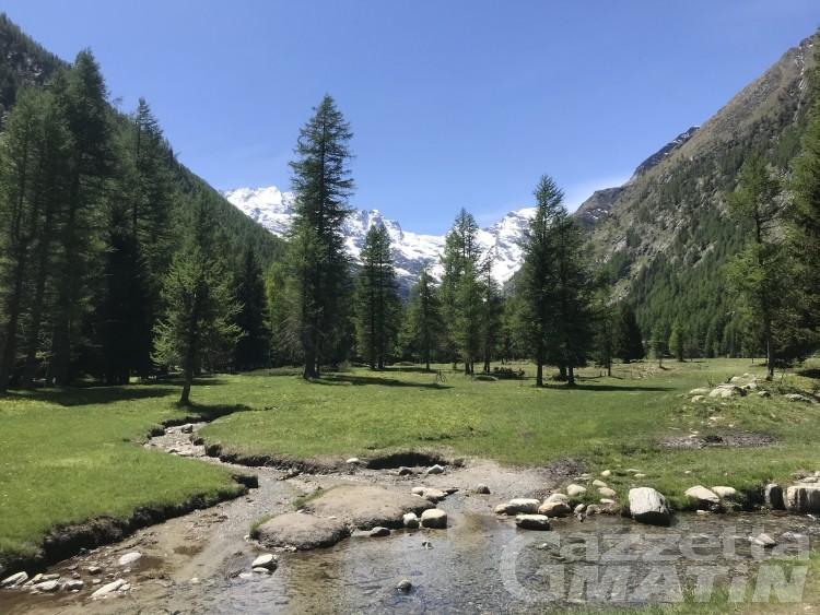 Cogne scommette tutto su natura e outdoor per l'estate 2021