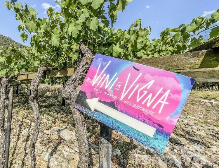 Maltempo: Vini in Vigna ad Aosta rinviata a domenica 8 agosto
