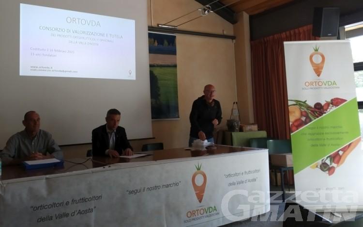 Ortofrutta in Valle d'Aosta: è nato il Consorzio dei produttori