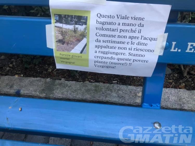 Aosta, incuria del verde, Nuti accusa: «Ereditato situazione deficitaria»
