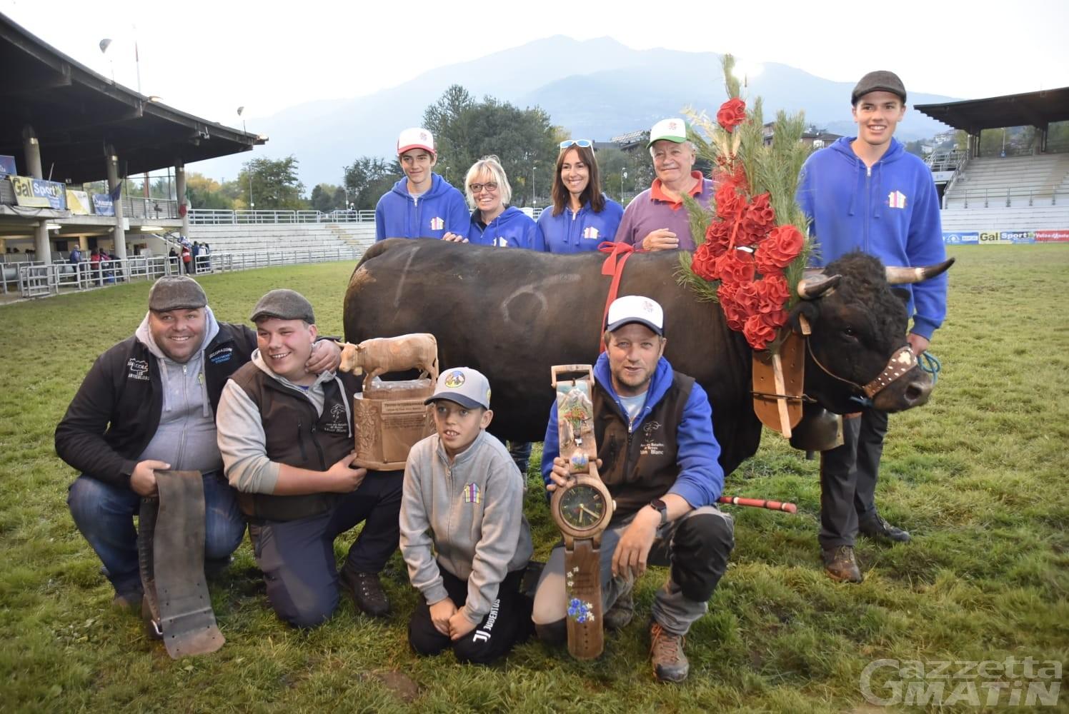 Batailles de reines: è ancora trionfo delle bovine valdostane