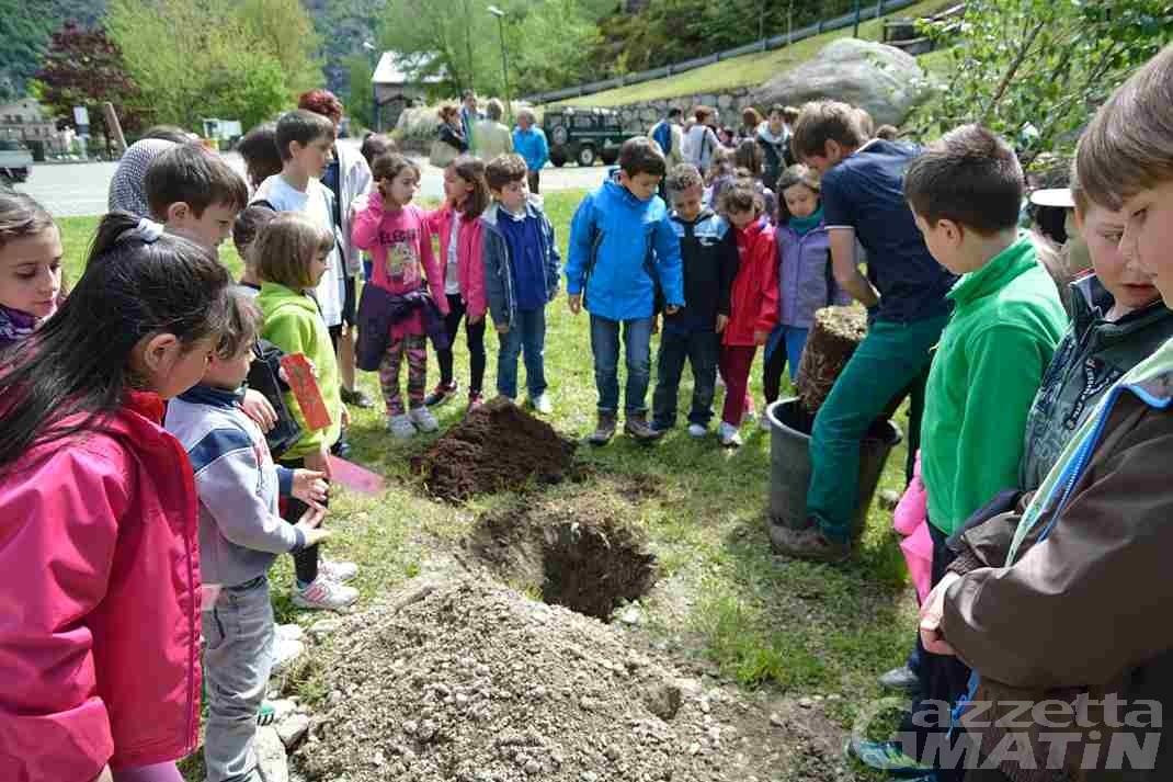 Hône: la festa degli alberi apre la quattro giorni di festa patronale