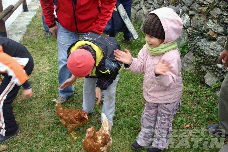 St-Vincent, galline domestiche e caldarroste per un'allegra domenica