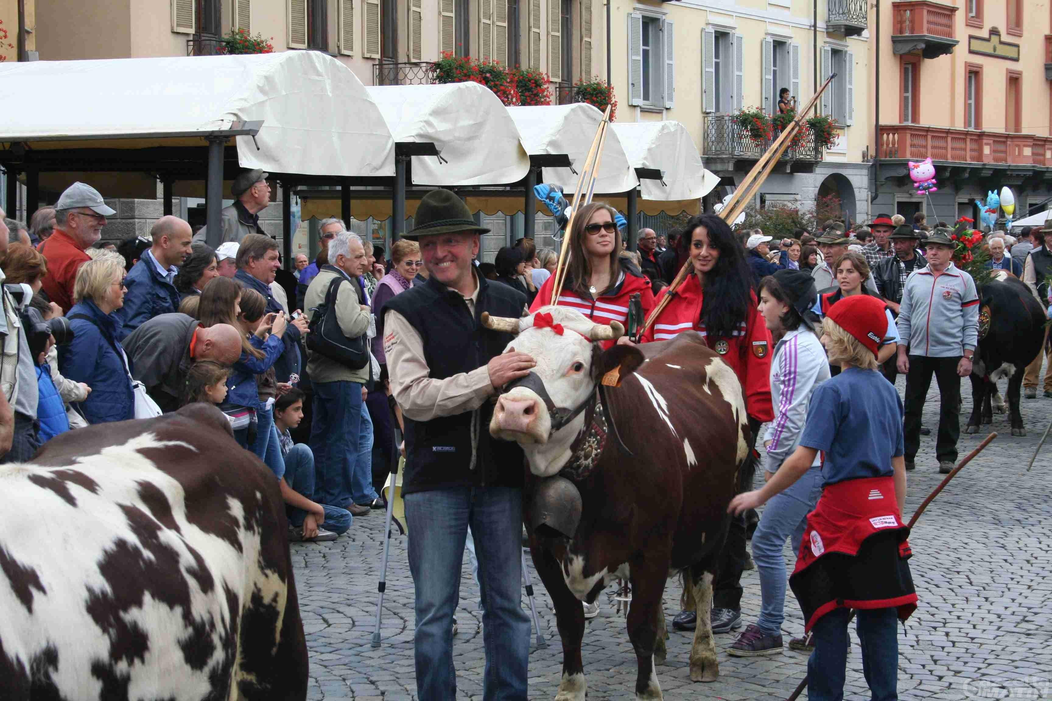 Désarpa: la festa degli allevatori arriva in città