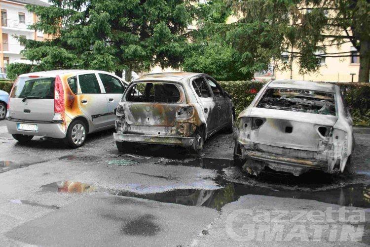 Rogo distrugge due auto, il dolo è escluso