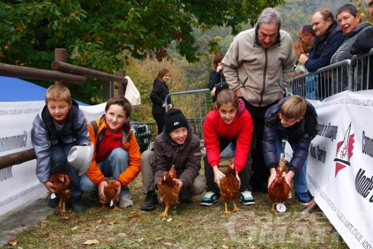 Saint-Vincent, castagnata e corsa delle galline a Moron