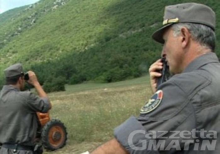 """Concorso agenti forestali; R.Donzel: """"Gestione inaccettabile"""""""