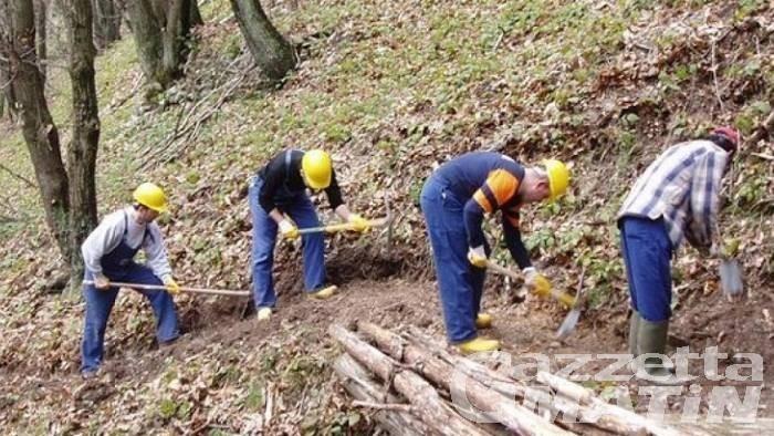 Assunzione di operai idraulico-forestali: domande fino al 22 settembre
