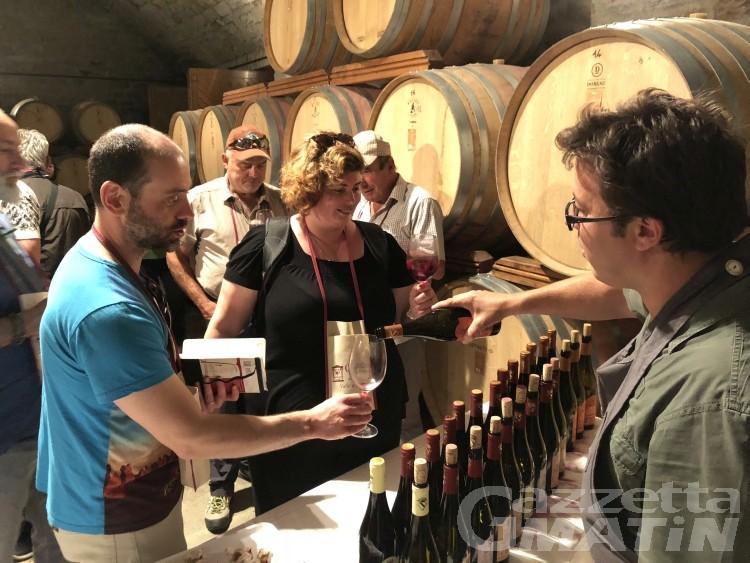 Cantine Aperte: cultura del vino sempre più attenta