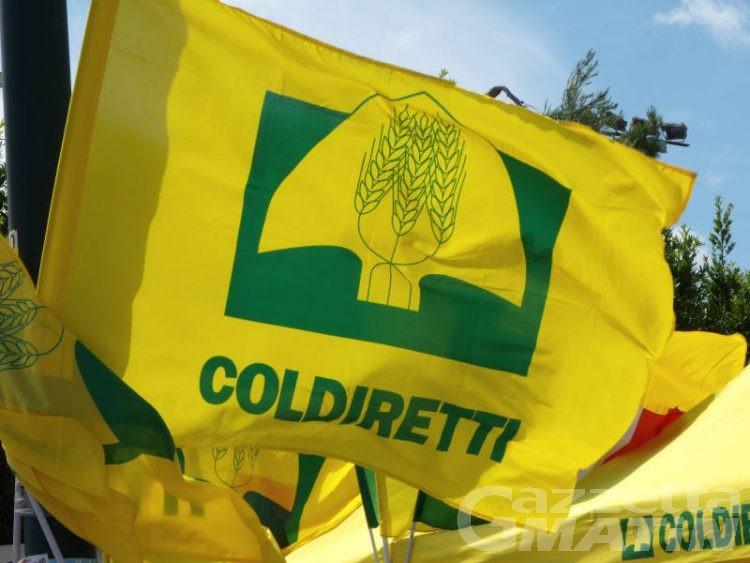 Coldiretti: anche la Valle d'Aosta al villaggio contadino di Roma