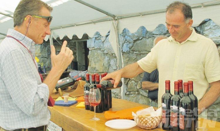Cantine aperte: domani si gustano i vini d'eccellenza