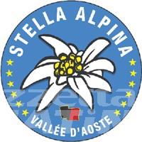 Stella Alpina: no all'elezione diretta del presidente della Regione