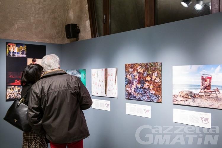 Forte di Bard: da domani e fino a settembre la mostra Wildlife Photographer of the Year