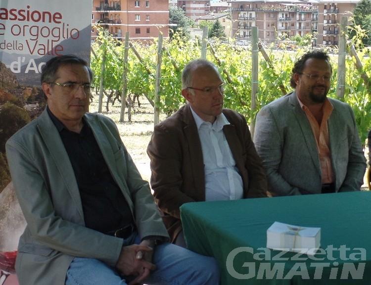 Viticoltura: Stefano Celi nuovo presidente del Cervim