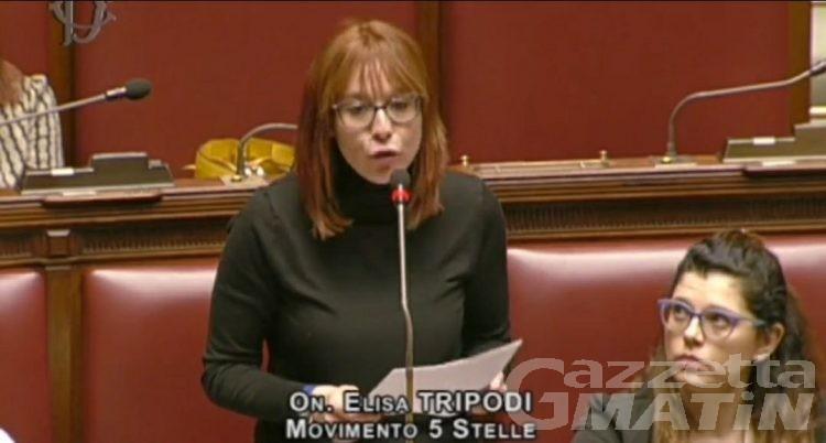 Montagna, l'onorevole Tripodi (M5S): «Governo accolga le nostre proposte sui ristori»