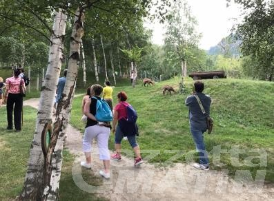 Zona arancione: possono riaprire i parchi zoologici e faunistici
